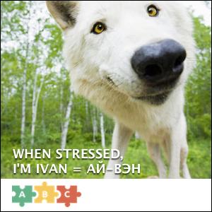 puzzle_ivan_stressed