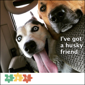 puzzle_ive_got_a_husky_friend