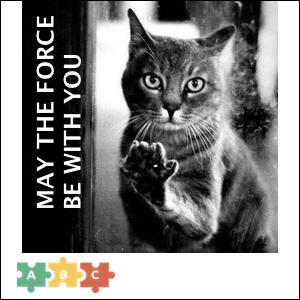 puzzle_jedi_cat
