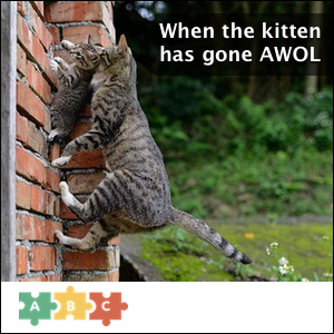 puzzle_kitten_gone_awol