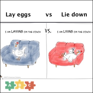 puzzle_lay_eggs_vs_lie_down