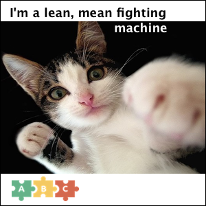 puzzle_lean_mean_fighting_machine