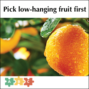 puzzle_low_hanging_fruit_first
