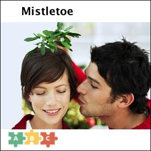 puzzle_mistletoe