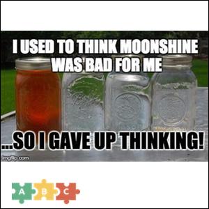 puzzle_moonshine