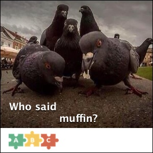 puzzle_muffin