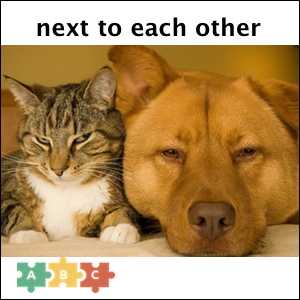 puzzle_next_to_each_other