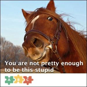 puzzle_not_pretty_enough