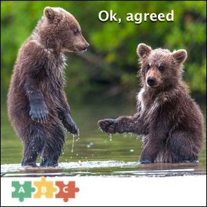 puzzle_ok_agreed