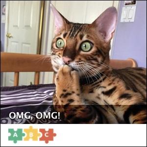 puzzle_omg