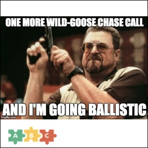 puzzle_one_more_wild_goose_chase_call