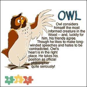 puzzle_owl