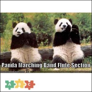 puzzle_panda_marching_band