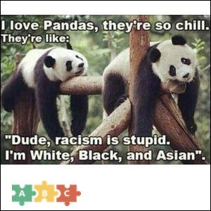 puzzle_pandas_asian