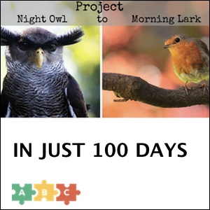 puzzle_project_100_days
