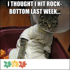 puzzle_rock_bottom_cat