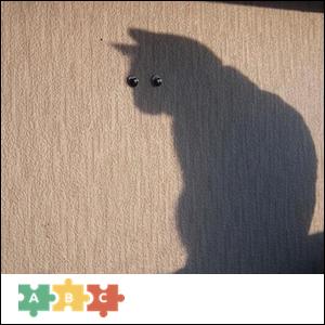 puzzle_shadow