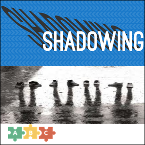 puzzle_shadowing