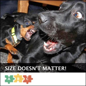 puzzle_size_doesnt_matter