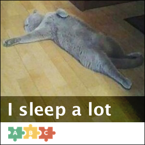 puzzle_sleep_a_lot