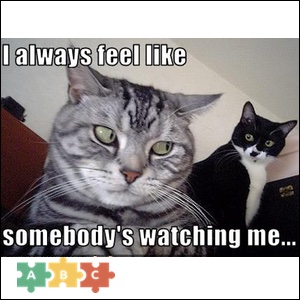 puzzle_smbs_watching_me