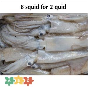 puzzle_squid_quid