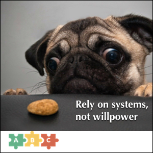 puzzle_systems_not_willpower