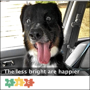 puzzle_the_less_bright_are_happier