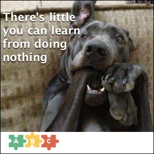 puzzle_there_is_little_you_can_learn_from_doing_nothing