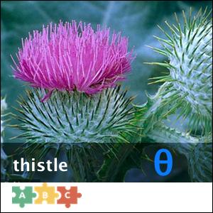 puzzle_thistle