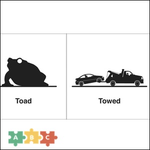 puzzle_toad_towed