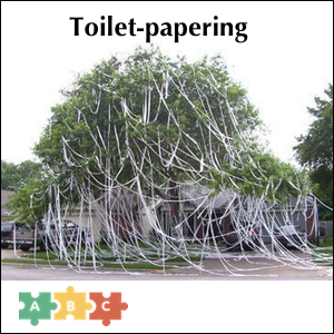 puzzle_toilet_papering