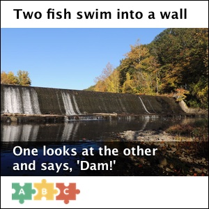 puzzle_two_fish