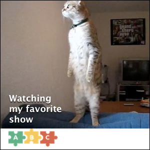puzzle_watching_favorite_show