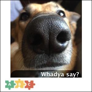 puzzle_whadya