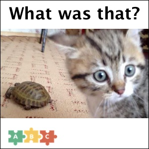 puzzle_what_was_that