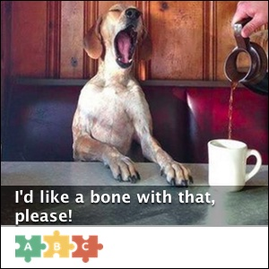 puzzle_would_like_a_bone