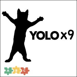 puzzle_yolo